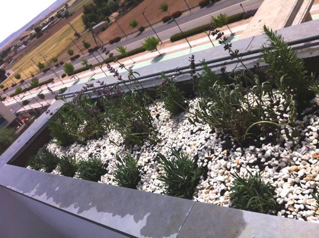 jardinera-aromatica-02